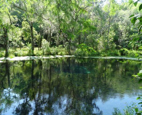 Blue Hole Springs